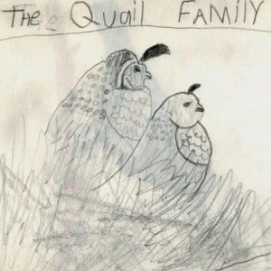 Quail by Colton Gardner, age 9