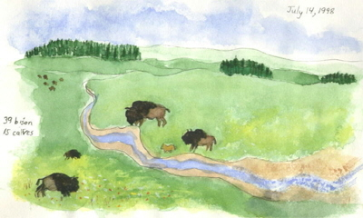 Yellowstone by Karen Rackliffe