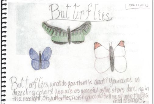 butterfly text